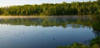 Minnesota Summer Morning